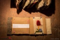 libri_di_pecora_sarda_realizzati_da_Rosangela_Sedda_
