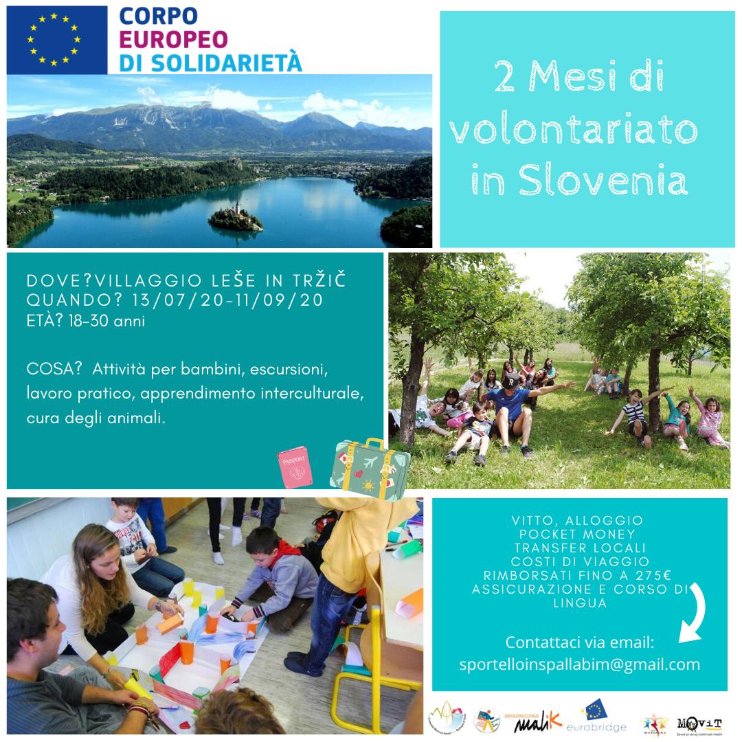 volontariato-slovenia